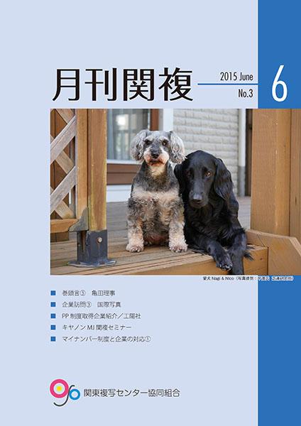 月刊関複3号表紙